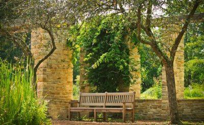 Jak założyć ogród wertykalny?
