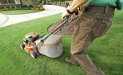 Zakładanie trawnika z siewu. Poradnik Ogrodniczy