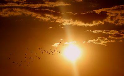 Alergia na słońce