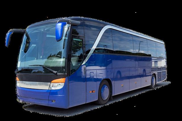 Bus do Holandii - jak wybrać najlepszą firmę przewozową?